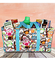 Gray Chevron Owl with Aqua Trim Collapsible Haul-It-All Basket with Mesh Pockets #GQL603-AQUA