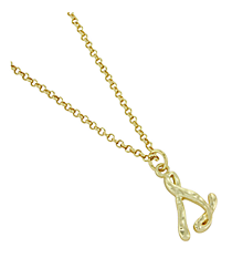 "Goldtone ""S"" Initial Necklace #AN0488-GS"