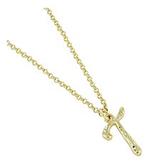"Goldtone ""T"" Initial Necklace #AN0488-GT"