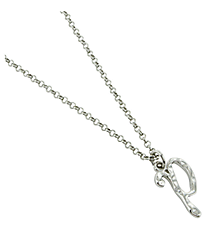 "Silvertone ""P"" Initial Necklace #AN0488-RHP"