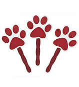 One Dozen Burgundy Paw-Shaped Fan #3/6331
