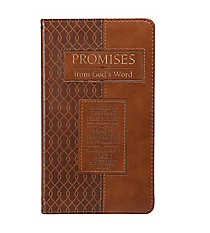 Promises from God's Word: I Know the Plans I Have for You #GP30