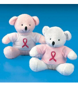 ONE BREAST CANCER PLUSH BEAR WITH T-SHIRT #6/1382-SHIPS ASSORTED
