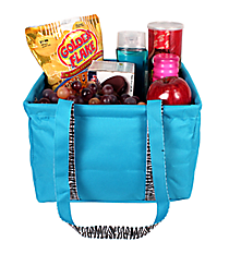 Turquoise and Zebra Collapsible Square Utility Tote #LZQ402-TURQ