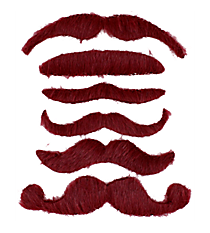 Set of 6 Burgundy Mustaches #13605785